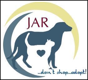 Don't Shop.....Adopt!