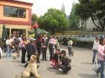 Dogs & people having fun outside!