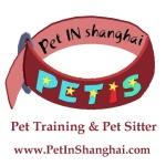 Pet In Shanghai