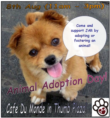 JAR'S Animal Adoption Day in Pudong!