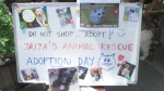 Welcome to JAR'S Animal Adoption Day