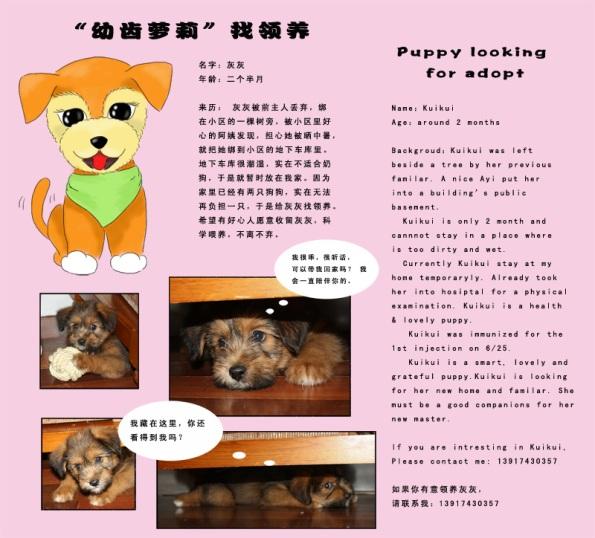 Kui Kui available for adoption!