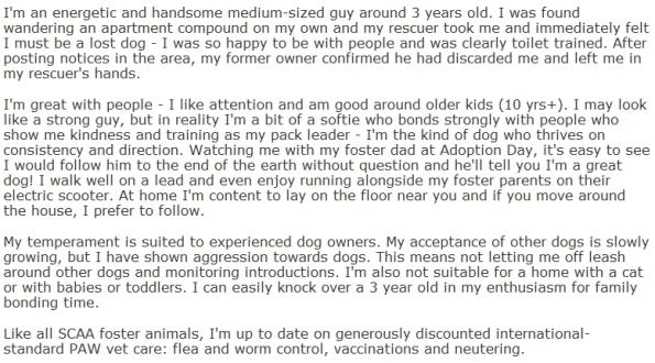 Foxy's bio