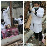 Final Victory of 3.02 Chongqing Dog Rescue-8